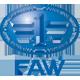 Форсунки FAW в Челябинске